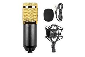 microphone BM-800-1